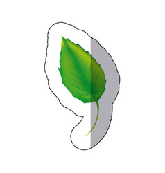 sticker color leaf icon vector image