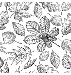 Seamless pattern with autumn leaves Hand vector image