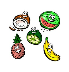 coconut watermelon pineapple banana lime vector image vector image