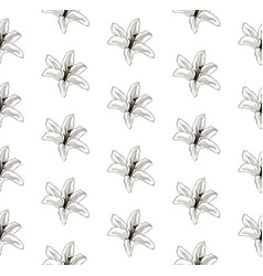 Black seamless pattern with drawn lilies vector