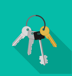 bunch keys vector image