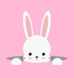 Cute white bunny rabbit easter vector