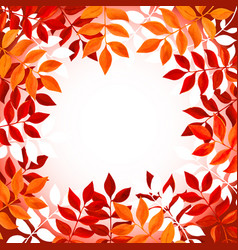 Floral background with orange and red leaves and vector