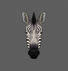 Head of zebra portrait of wild animal hand drawn vector
