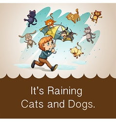 Its raining cats and dogs vector
