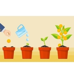 Money tree growing Business economic investment vector