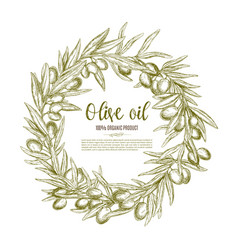 olive wreath sketch label for oil and food design vector image