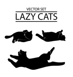 set of three cat icons vector image