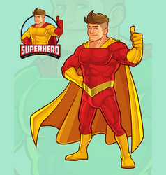 Superhero mascot design for business vector