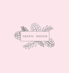 tropic icon template vector image