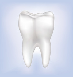 Tooth isolated teeth white sign dental medical vector