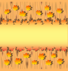 autumn maple leaves on wood background vector image