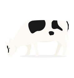 Cattle cow vector