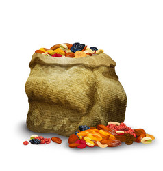 Dried fruits in sack vector