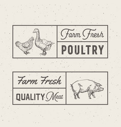 Farm fresh poultry and meat abstract signs vector