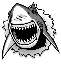Great white shark ripping with opened mouth vector