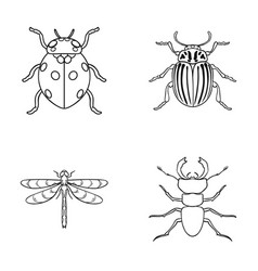 Insect bug beetle paw insects set collection vector