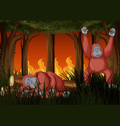 Scene with wildfire and two chimpanzees vector