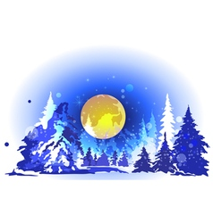 Winter forest at night vector image