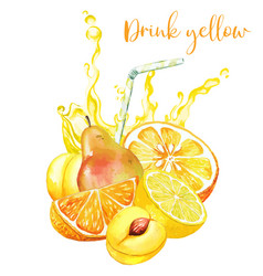 yellow fruits composition with yellow juice splash vector image