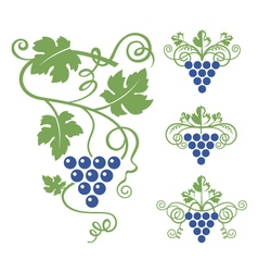 grapes icon set vector image