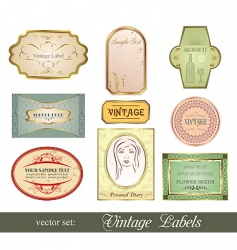 set retro variation vintage labels vector image