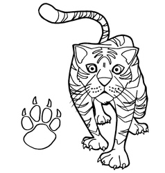 tiger with paw print Coloring Pages vector image