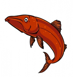 pike fish vector image