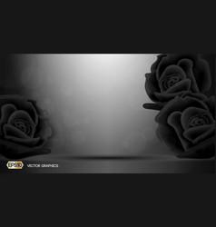 black roses flowers fragrance for ads dazzling vector image vector image