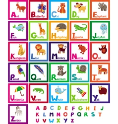 cartoon alphabet with funny animals vector image vector image