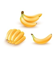 Set of isolated banana fruits vector image
