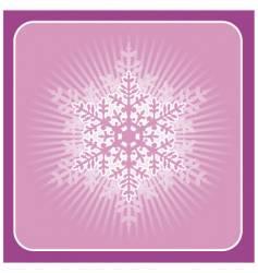 big snowflake vector image