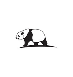 panda icon template vector image