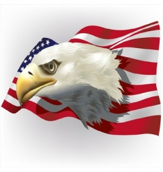 Us patriotic theme vector