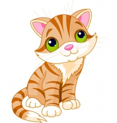 very cute kitten vector image