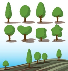 set of green trees with shadows vector image