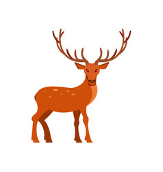 Brown spotted deer with antlers standing wild vector
