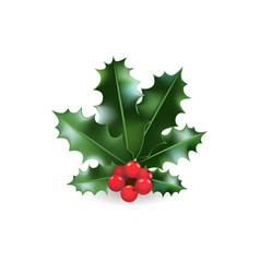 festive holy branch vector image