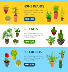 green plants in pot banner horizontal set 3d vector image