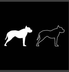 pit bull terrier icon set white color flat style vector image