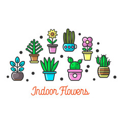 indoor flowers in colorful pots set on poster vector image