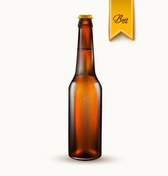 realistic beer bottle mockup 3d isolated vector image