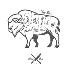 Vintage butcher cuts of bison buffalo scheme vector