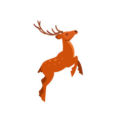 brown spotted deer with antlers jumping wild vector image