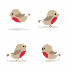 Robins vector