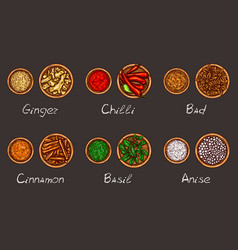 A variety of spices and vector