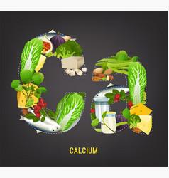 calcium in food vector image