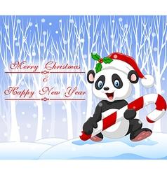 Cartoon funny panda bear holding Christmas candy vector
