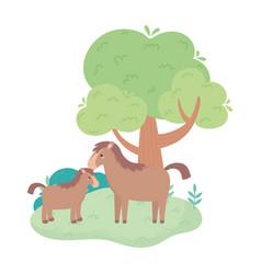 Cute horse and foal tree bush grass cartoon vector