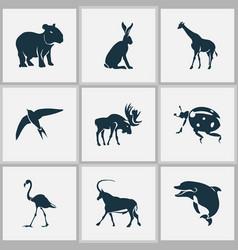 fauna icons set with capybara moose ladybird and vector image